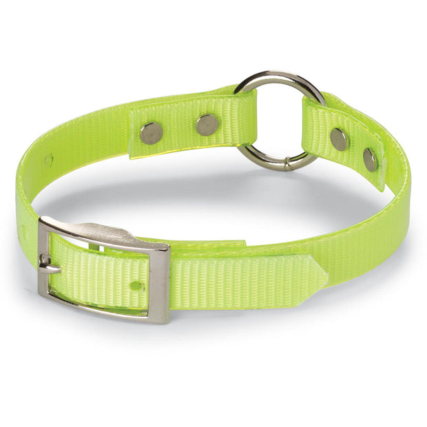 "Nite Lite 3/4"" Day-Glo Collar Ring-N-Center"