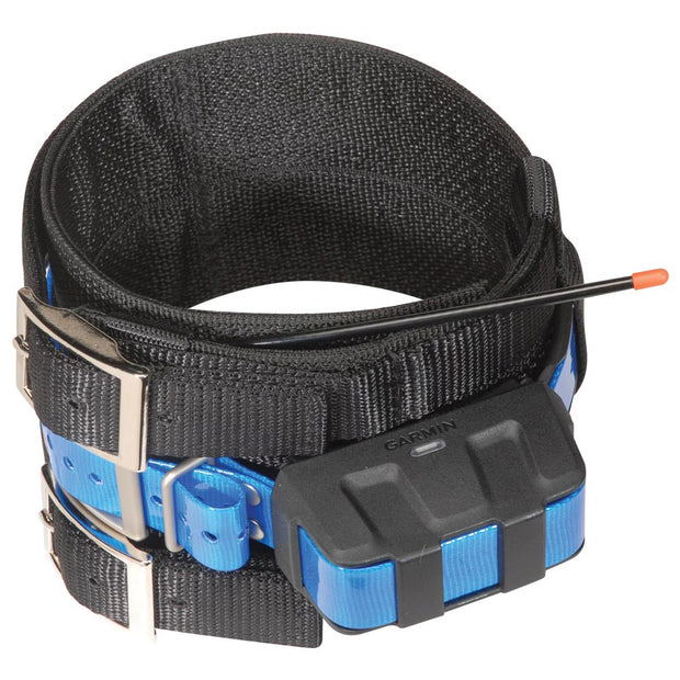 Nite Lite Hog Dog Collar For Garmin Tracking Unit