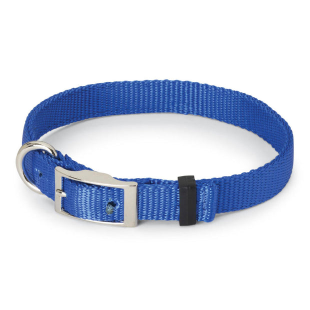 "Nite Lite Double Ply Nylon 3/4"" D-Ring in Front Dog Collar"