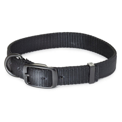 "Nite Lite Double Ply Nylon 1"" D-Ring in Front Black Dog Collar"