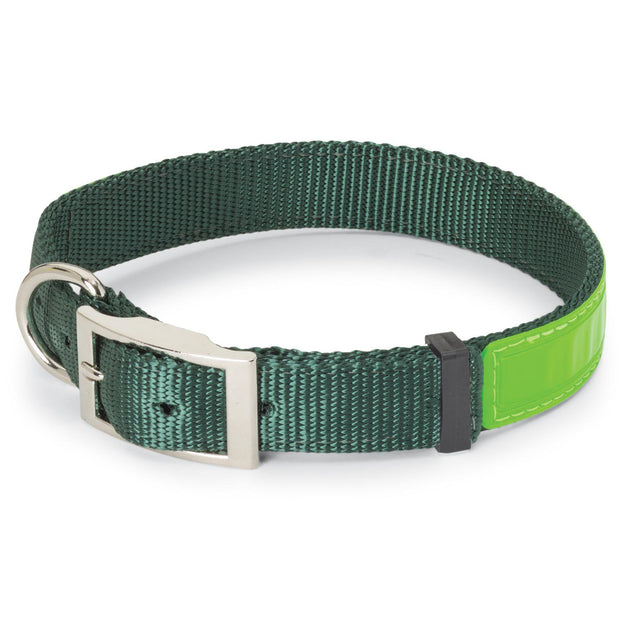 "Nite Lite Reflexite Nylon 1"" D-Ring in Front Reflective Dog Collar"