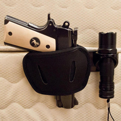 Pistol Holster & Bed Mount