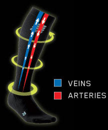 Veins/Arteries in compression