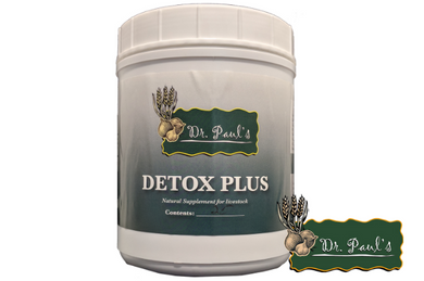 Detox Plus Bolus (Dr. Paul's Lab)