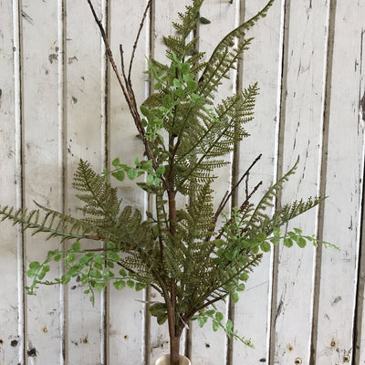 Pick - Ferns & Foliage