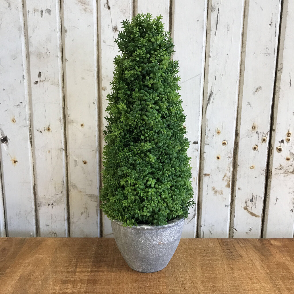Topiary-Cement Pot 16""