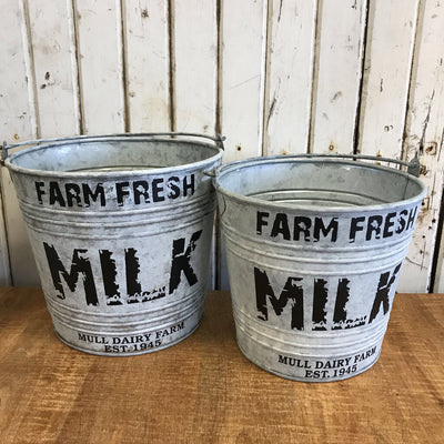 Milk Pail - Farm Fresh Milk - Sm. 8x9