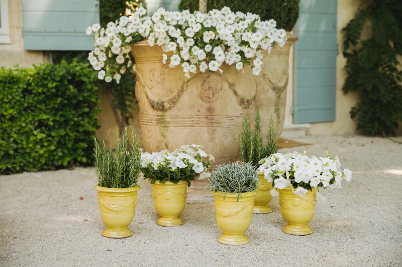 Anduze Pot in Sunflower Yellow