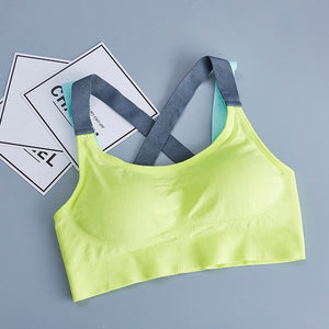 Morning Dew Sports Bra