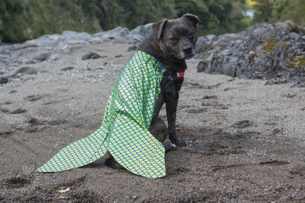 Dog Costume DIY: Mermaid