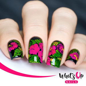 Whats Up Nails-A005 Floral Paradise Stamping Plate
