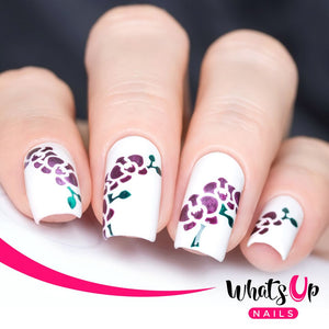 Whats Up Nails - Orchid Stencils by solo_nails