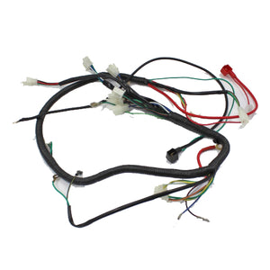 WIRE LOOM WIRING HARNESS GY6 125cc 150cc 250cc ATV QUAD BIKE BUGGY GO KART DUNE