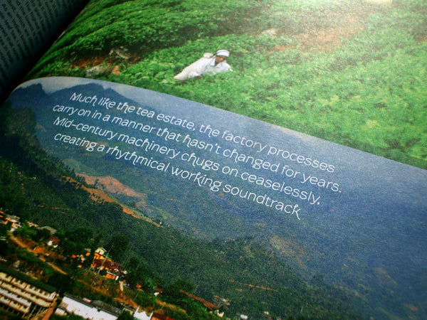 organic tea fields in good magazine