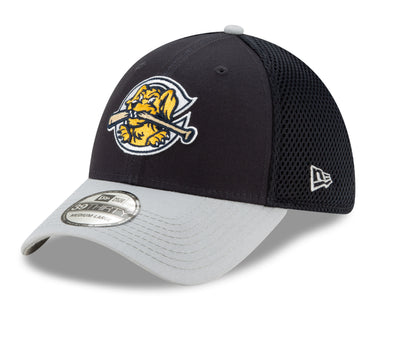 Charleston RiverDogs New Era Flex Fit Cap