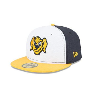 Charleston RiverDogs 2019 BP Cap