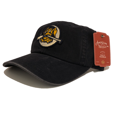 "Charleston RiverDogs American Needle ""Archive"" Cap"