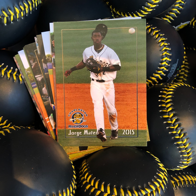 Charleston RiverDogs 2015 Team Set
