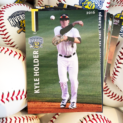 Charleston RiverDogs 2016 Team Set