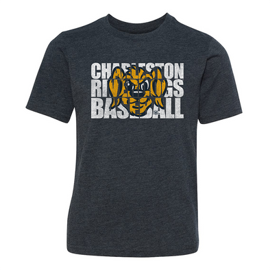 "Charleston RiverDogs Youth ""Block"" Tee"