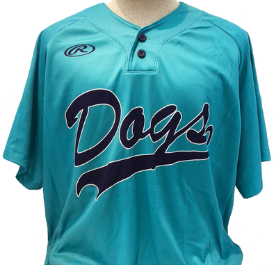 Charleston RiverDogs Game Worn Throwback Jersey
