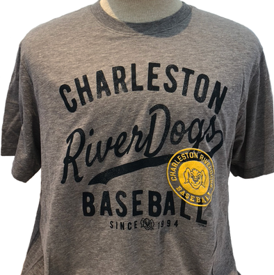 Charleston RiverDogs '47 Brand Gray Tee