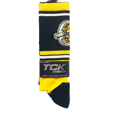 Charleston RiverDogs Logo Socks