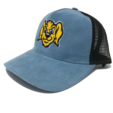 Charleston RiverDogs Corduroy Snapback Cap