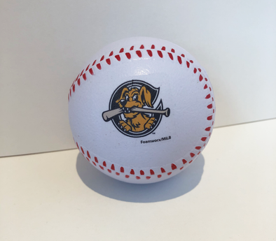 Charleston RiverDogs Foam Baseball