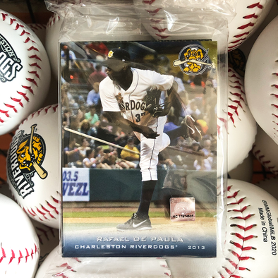 Charleston RiverDogs 2013 Team Set