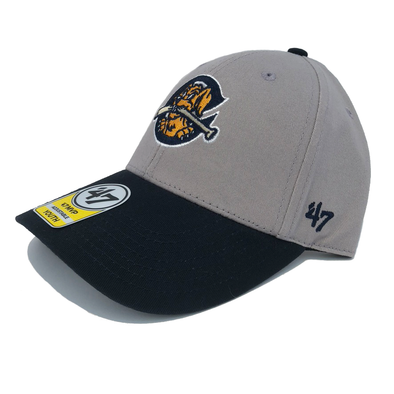 Charleston RiverDogs Youth MVP Gray & Navy Cap