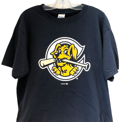 Charleston RiverDogs Youth Home Cap Tee