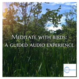 Meditate with Birds: a guided audio experience