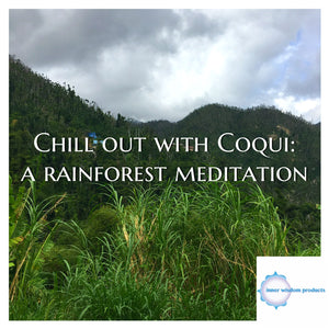 Chill Out with Coqui: a rainforest meditation