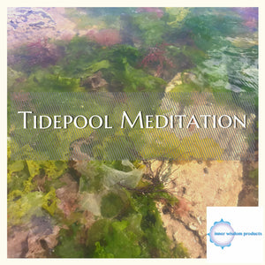 Meditate at the Tidepool