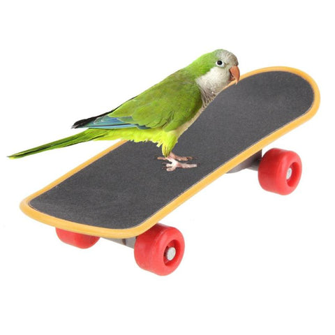 Funny Mini Parrots Skateboard Birds Acrobatics Training Playing Skateboarding Birds Interaction Toys Pet Supplies