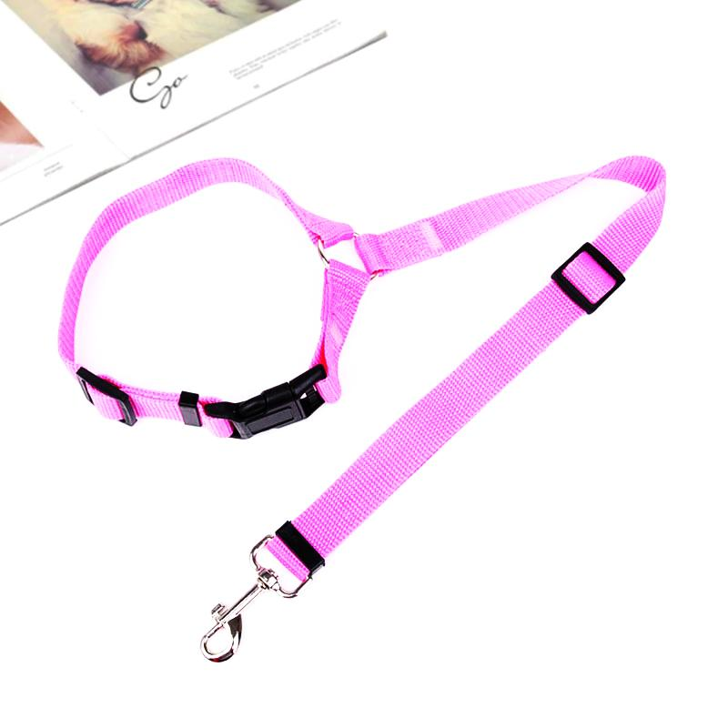 Adjustable Car Dog Leash