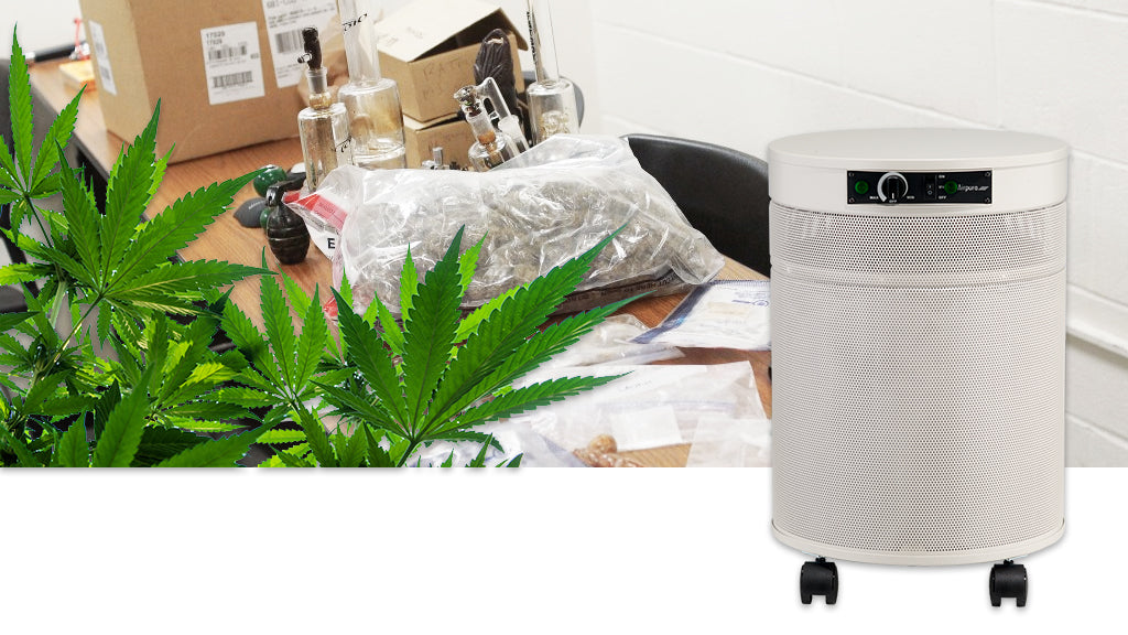 Airpura C600 Air Purifier for Police Evidence Rooms and Marijuana Dispensaries