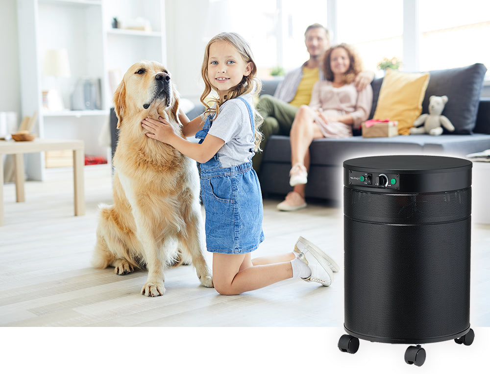 Airpura H600 Best Air Purifier for Allergies and Asthma