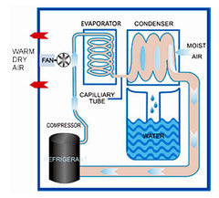 How does the Storm LGR Extreme Dehumidifier work?
