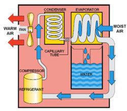 Diagram of the Ebac Dehumidifier