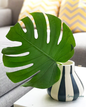 Load image into Gallery viewer, Monstera Deliciosa Leaf