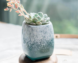 Ceramic Succulent Planter with Succulent Pot/Pottery/Handmade/Ceramic/Glazed/Table Decor/Indoor Decor/Tabletop Planter
