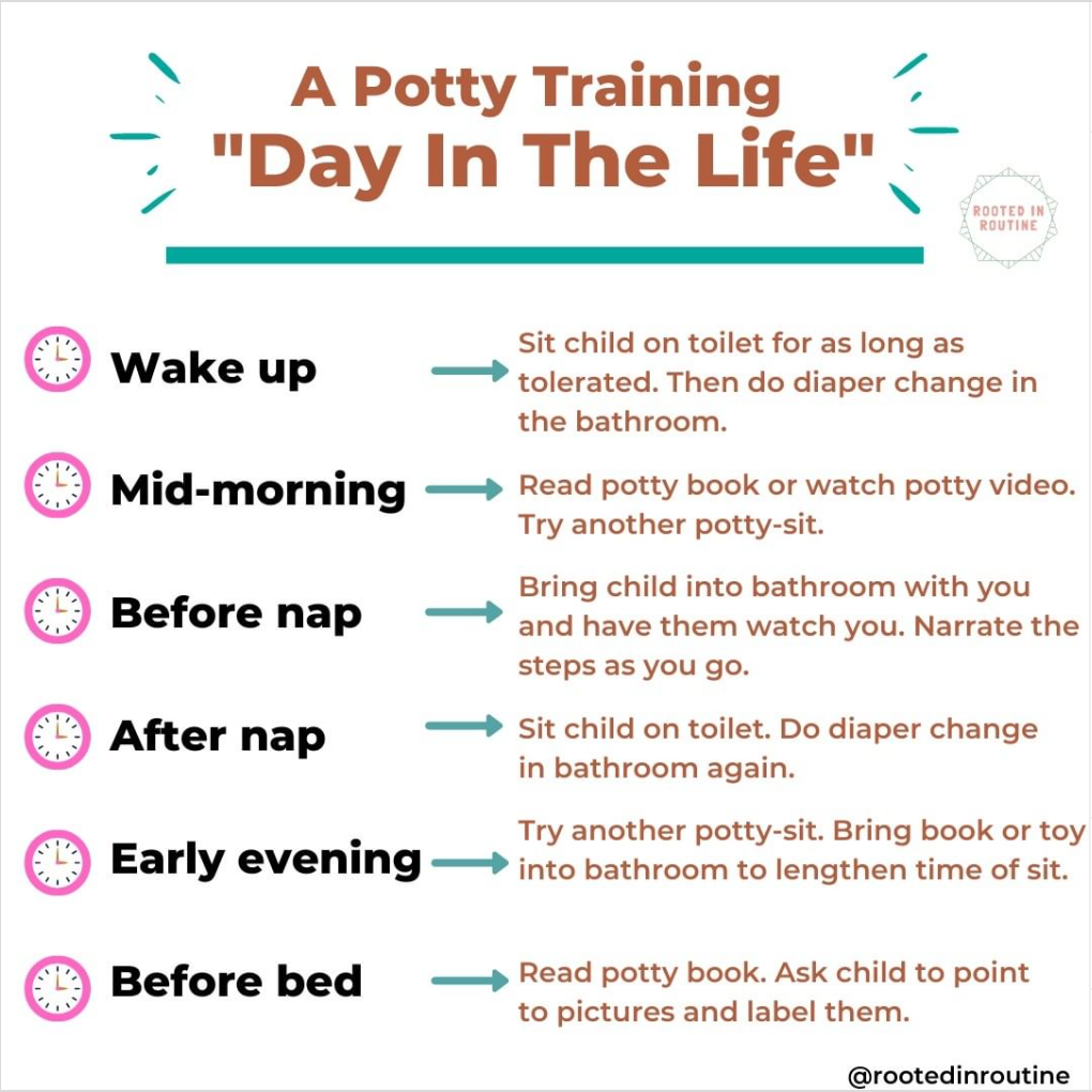 "A Potty Training ""Day in the Life"""