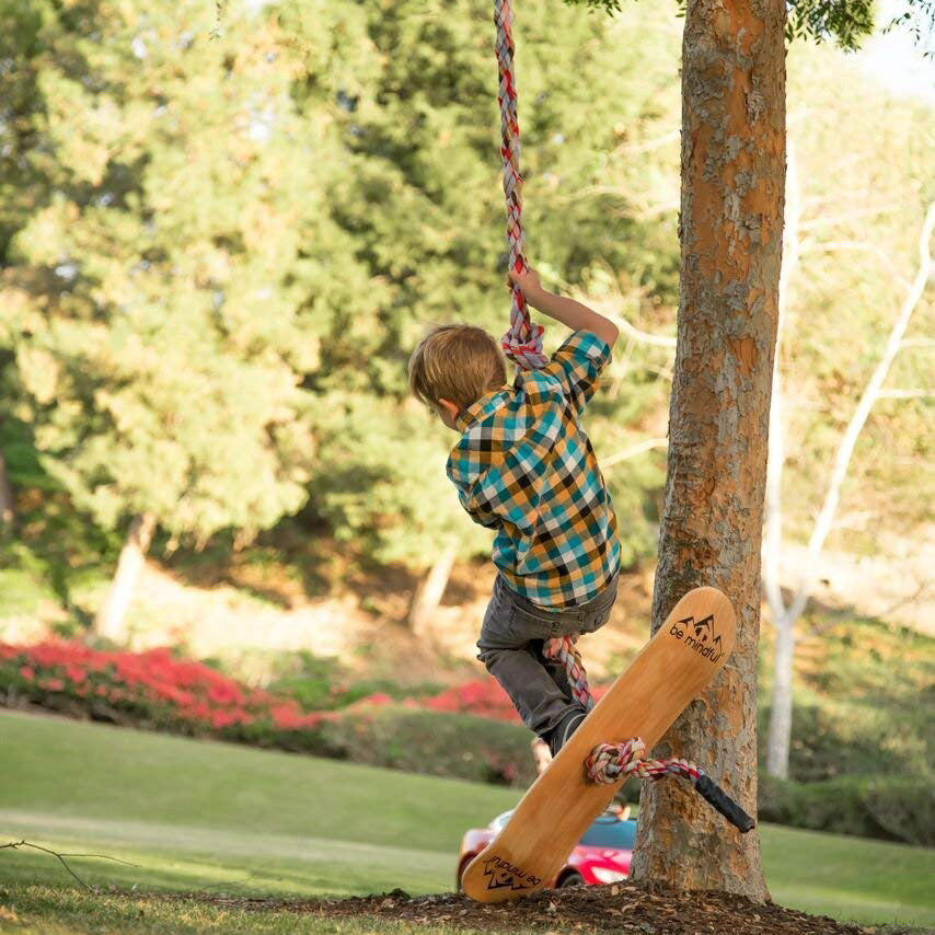 Skateboard Swing and Climbing Rope
