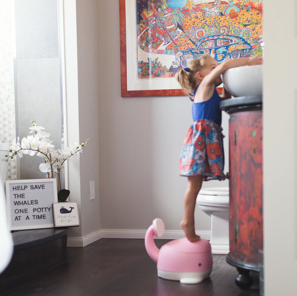 Be Mindful Moby Potty Trainer