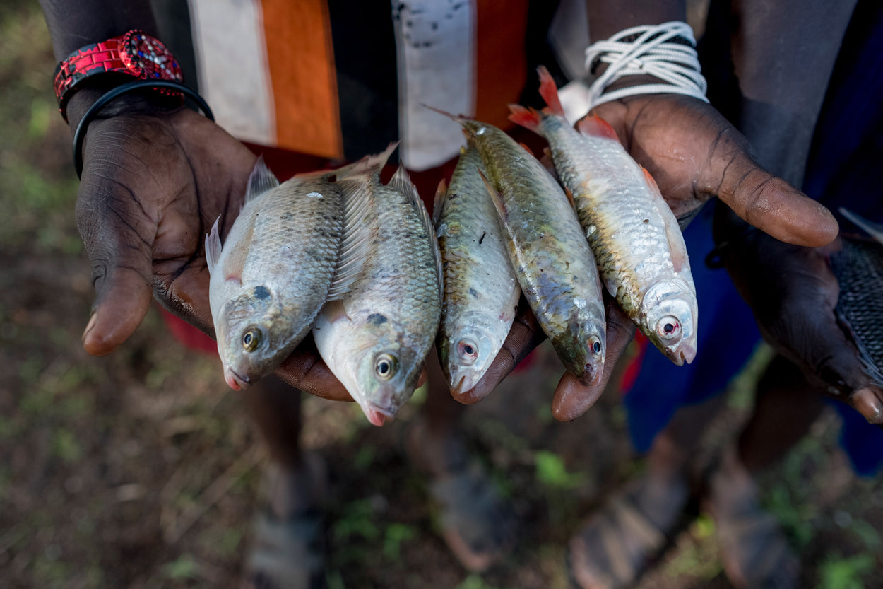 man holding five small fish in his hands