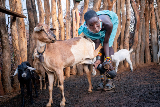 A goat will change a child's life!