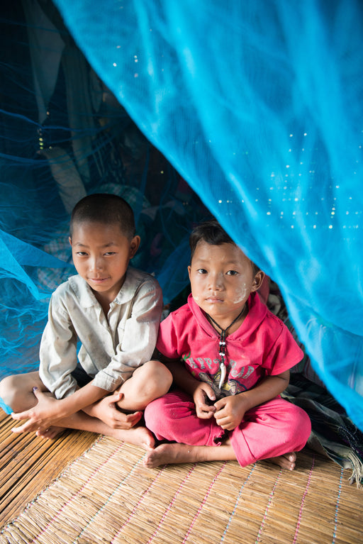 two children sitting under a mosquito net