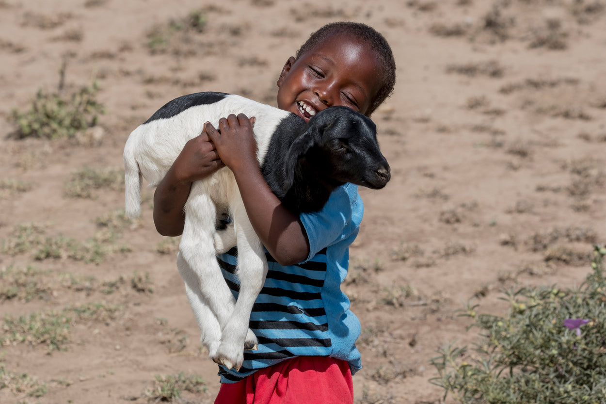 a smiling boy holding a young sheep